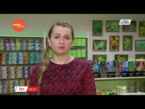 Наше УТРО на ОТВ знахарь о пользе семян черного тмина