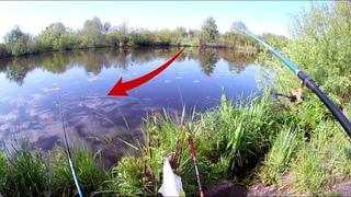 Как я удивился на рыбалке, когда повернулся и увидел кто стоит за моей спиной