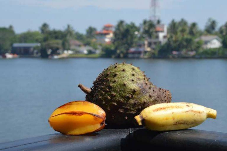 Гид по фруктам Шри-Ланки, изображение №6