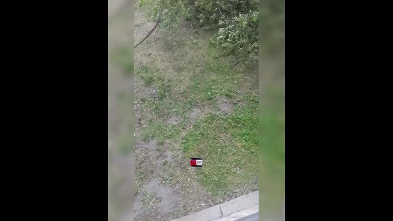 ⚠️Дерево упало на дом в Новосибирске