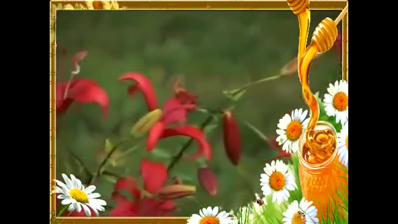 Выращивание лилий на даче