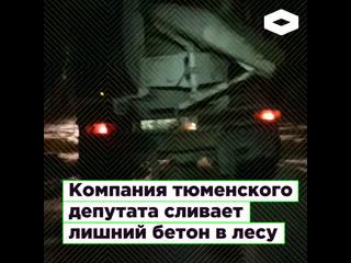 Компания тюменского депутата Николая Русса сливает лишний бетон в лесу | ROMB