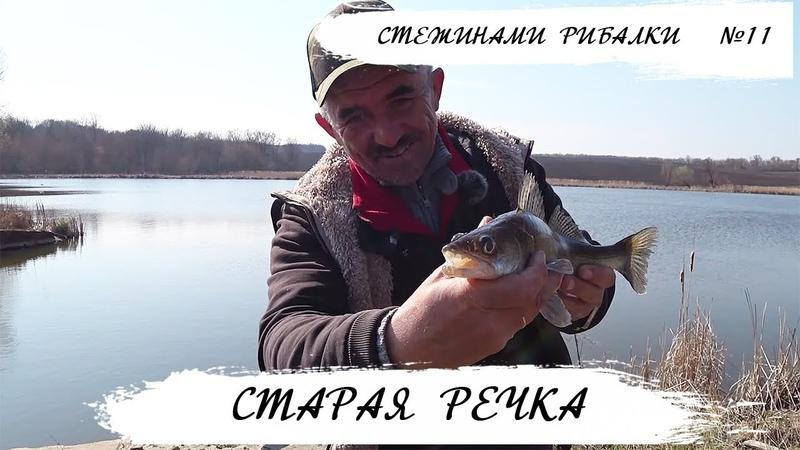 Ловля судака на старой речке Олег Яворович Стежинами Рибалки №11