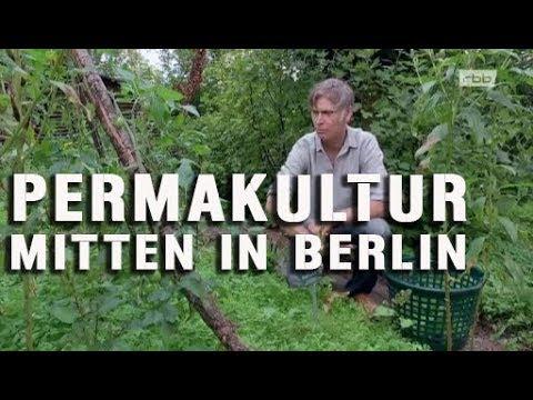 Permakultur in Berlin Neukölln Café Botanico Restaurant Urban Gardening