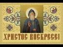 Православный † календарь. Вторник, 12 мая, 2020г. Прп. Амфилохия Почаевского (1970)