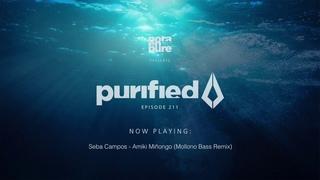 Nora En Pure - Purified Radio Episode 211