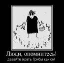Личный фотоальбом Дениса Куркова