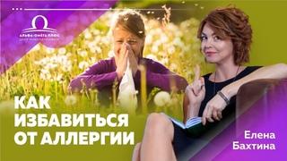 Как избавиться от аллергии? / Елена Бахтина