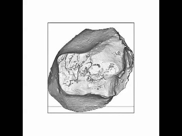 3D Structure of Hayabusa Samples of S type Asteroid 25143 Itokawa