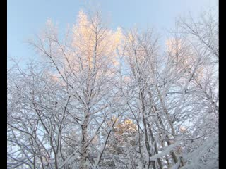 Мой зимний фото  слайд на красивую мелодию)