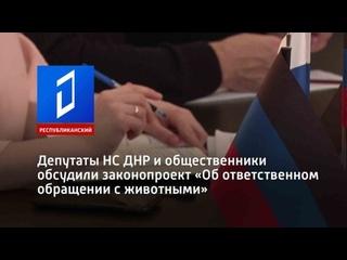 Депутаты НС ДНР и общественники обсудили законопроект «Об ответственном обращении с животными»