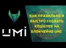 Подробная инструкция о том как создать кошелек криптовалюты UMI на сайте umi.top!