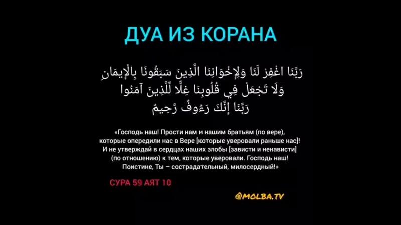Коран 59 10