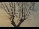 Видео от Kseniya Lomtyaeva