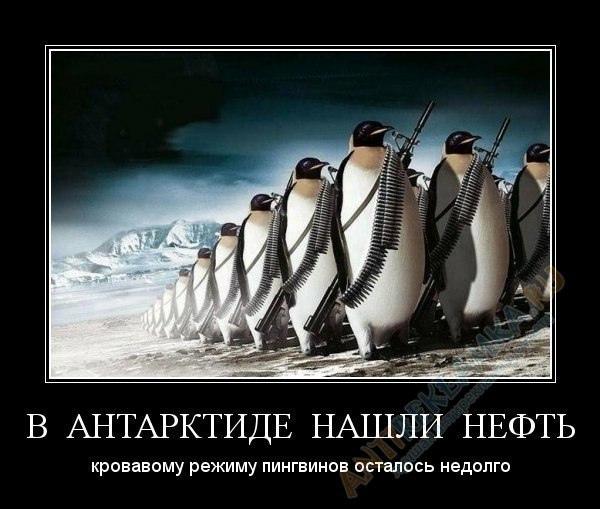 фото из альбома Святослава Демьяненко №14