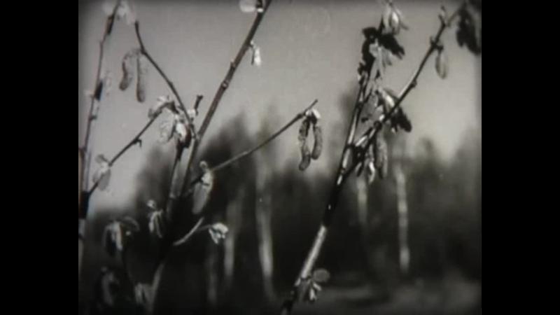 01 Опыление и оплодотворение цветковых растений