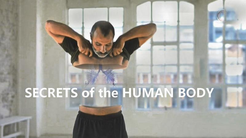 BBC Секреты человеческого тела 1 серия Рост