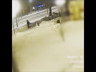 В Тобольске мужик попытался отжать телефон у хрупкой девушки. Злой Ямал.