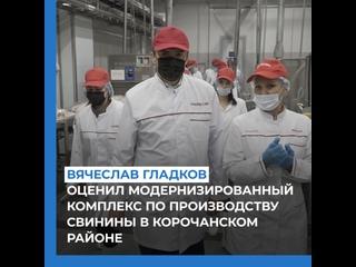 Вячеслав Гладков оценил модернизированный комплекс по производству свинины в Корочанском районе