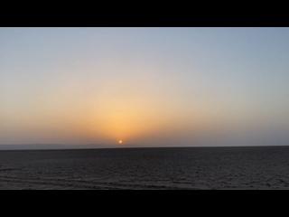 Видео от Светланы Дмитриевой