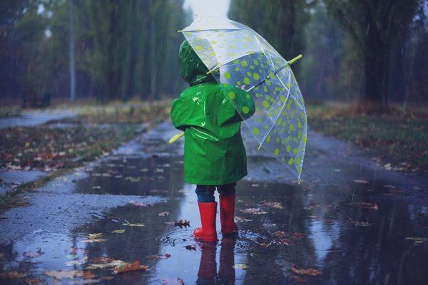 В Самарской области до конца недели дождь и плюс 1...
