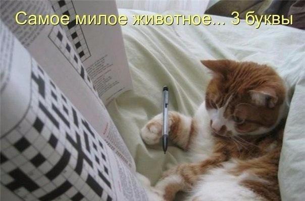 фото из альбома Фариды Сабировой №1