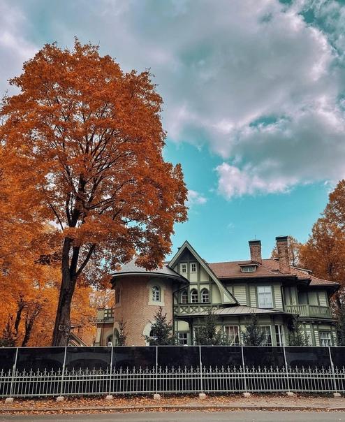 Волшебная осень на Каменном острове! 😍...