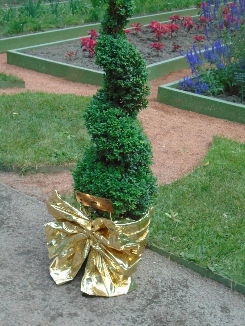 Новые зеленые скульптуры взамен утраченных
