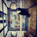 Юрий Синодов фотография #10