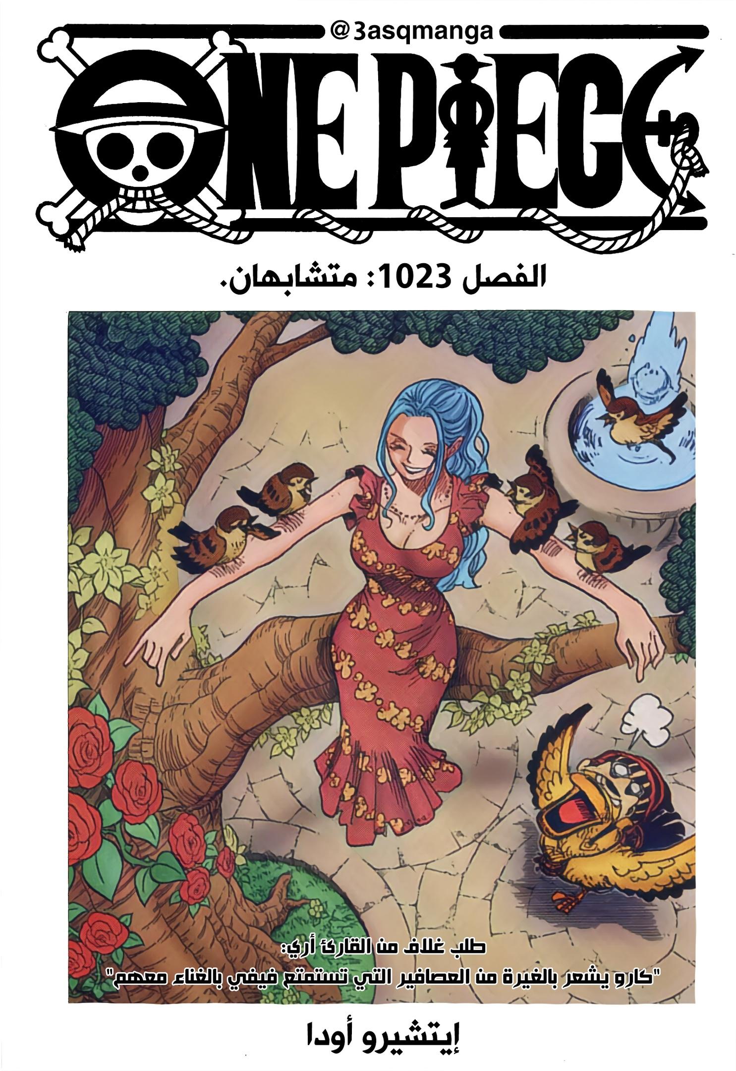 One Piece Arab 1023, image №26
