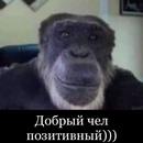 Персональный фотоальбом Эрика Элларяна
