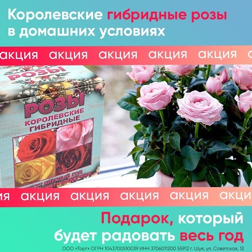 Кейс: «Королевские гибридные розы» в MyTarget!, изображение №6
