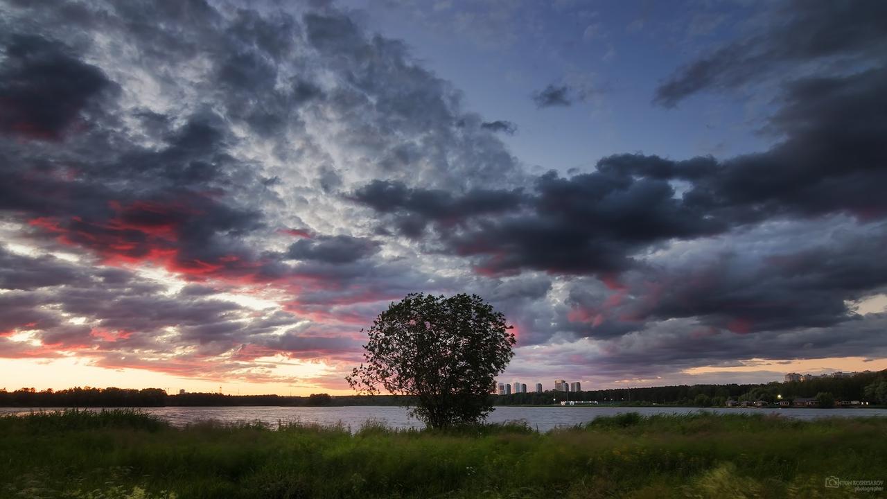 фото из альбома Anton Koshetarov №7