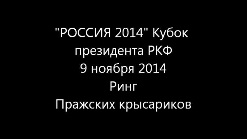 Пражский крысарик Кубок президента 09 11 2014г