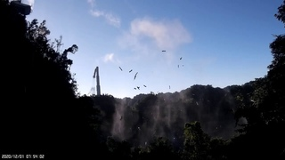 Footage of Arecibo Observatory collapse