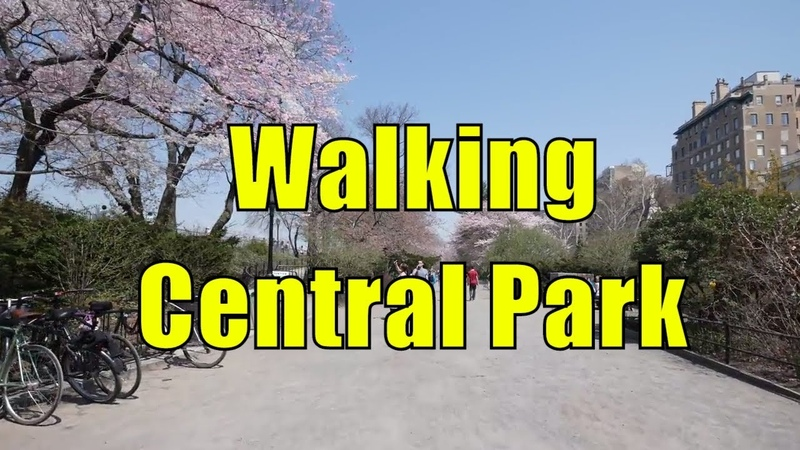 ⁴ᴷ Walking Tour of Central Park NYC during Spring from 59th 110th Streets