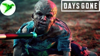 Days Gone на PC #8 🎮 Зачем они их ловят?