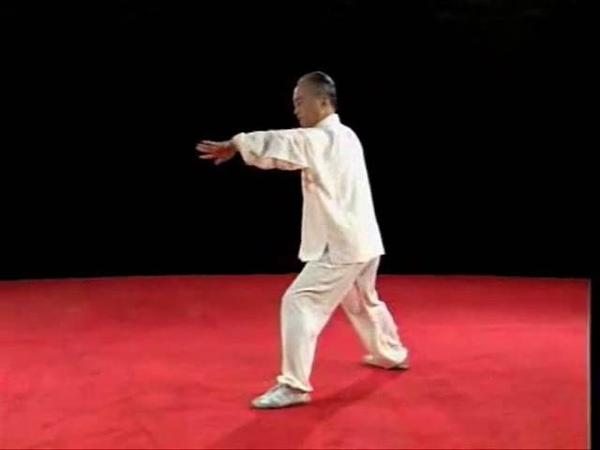 Yăn shŏu gōng chuí 掩手肱錘 28