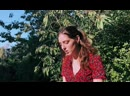 Birdy – Blue Skies Willie Nelson cover