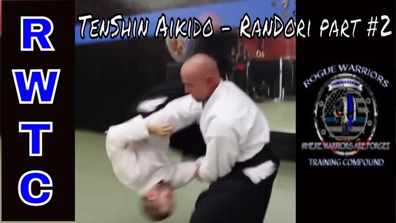 Multiple Attackers - TenShin Aikido part 2 takingaikidoback