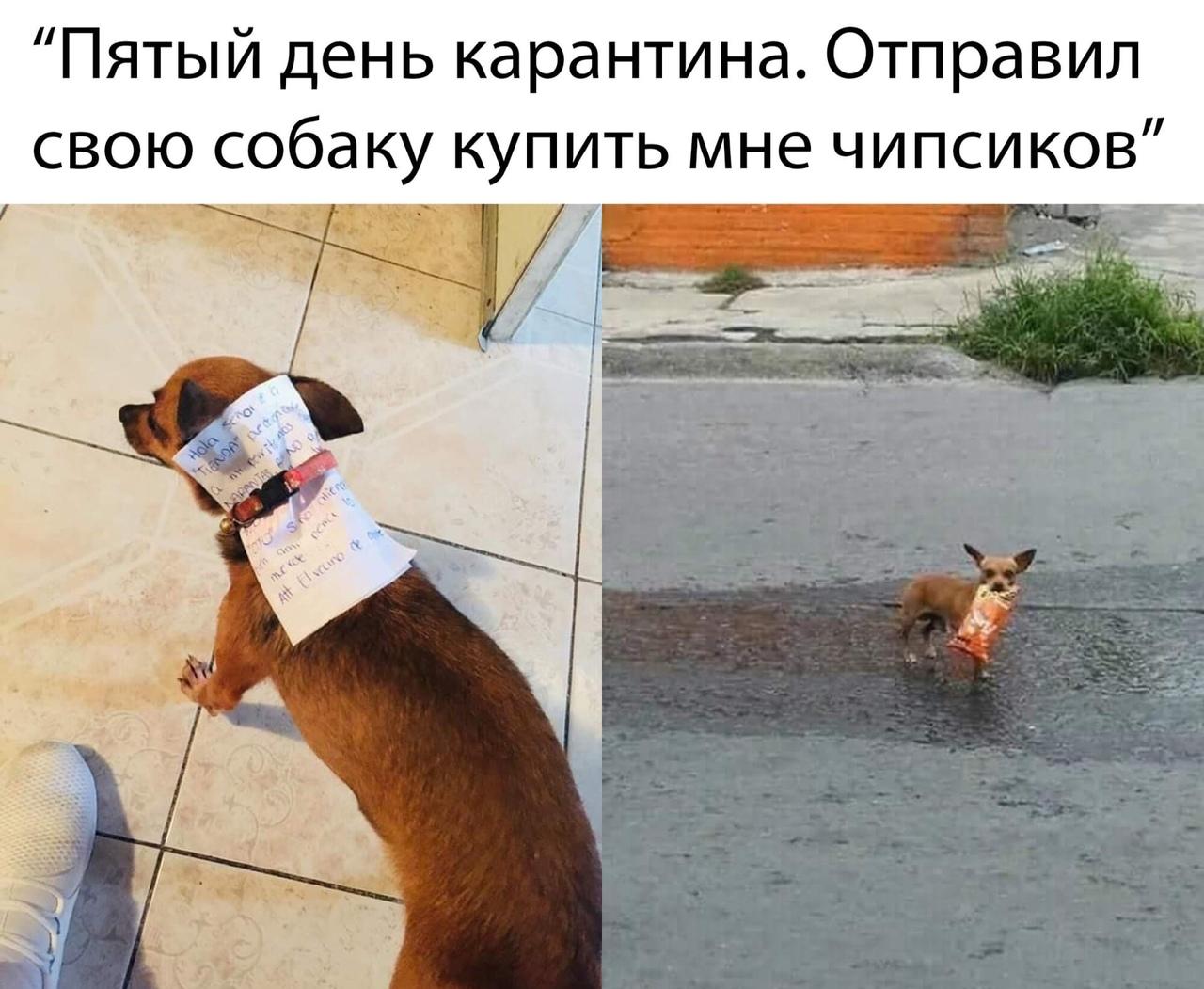 FWBSZhISRAo.jpg