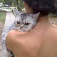 Фотография страницы Киры Исаевой ВКонтакте