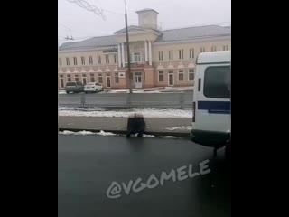 Невообразимый номер на улице Ефремова в Гомеле