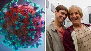 Ученые: После коронавируса люди глупеют