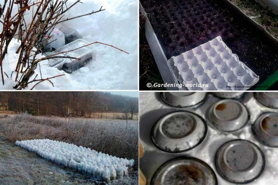 Как сажать семена под зиму
