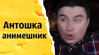 Антошка анимешник | КОНСТАНТИН КАДАВР (НАРЕЗКА СТРИМА)