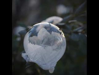 This soap bubble freezes in real-time
