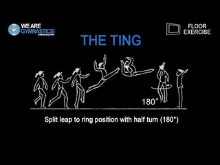THE TING - 2019 FIG World Cup Melbourne WAG new FX element