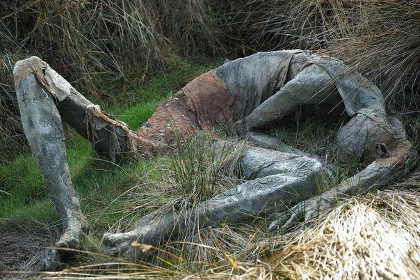 Жууутко необычные скульптуры из глины Софи Престиджакомо. Скульптуры Софи были установлены во французском заповеднике Marais de Séné, где восхищали, удивляли и пугали посетителей несколько